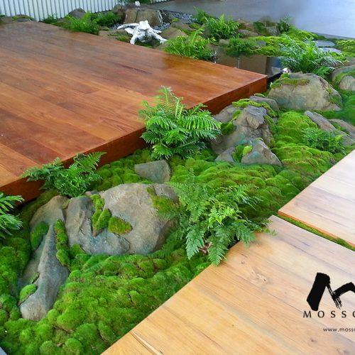 Artificial greenery in Cove Way Sentosa