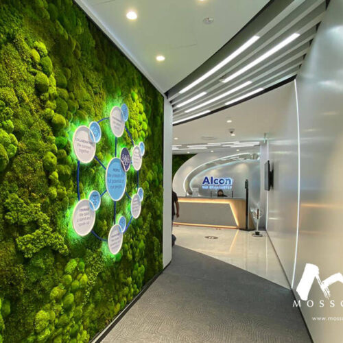 Preserved moss wall installation at Alcon office