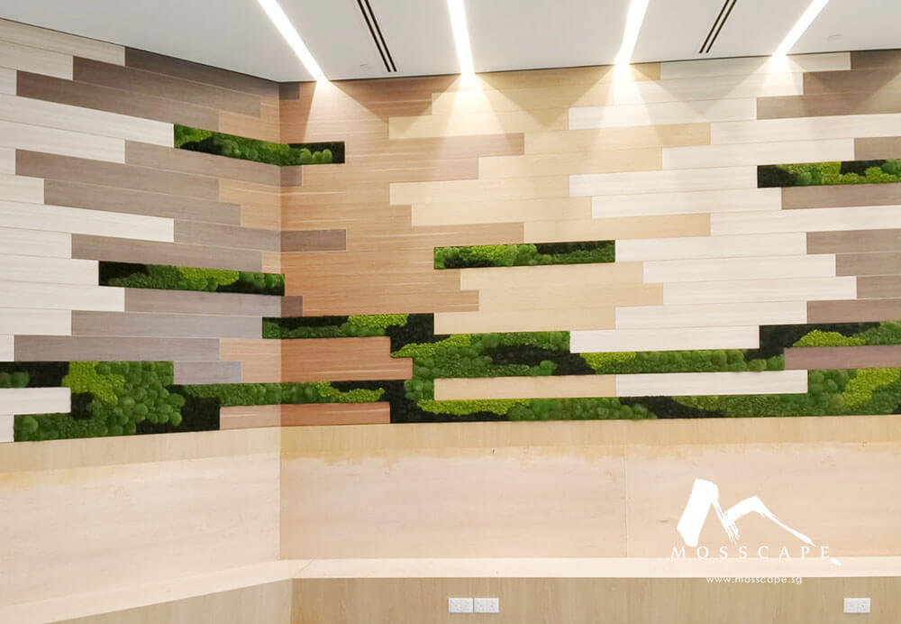Preserved moss art incorporated into walls at Astra Zeneca office