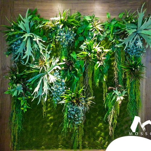 Artificial vertical garden in residence at Claymore