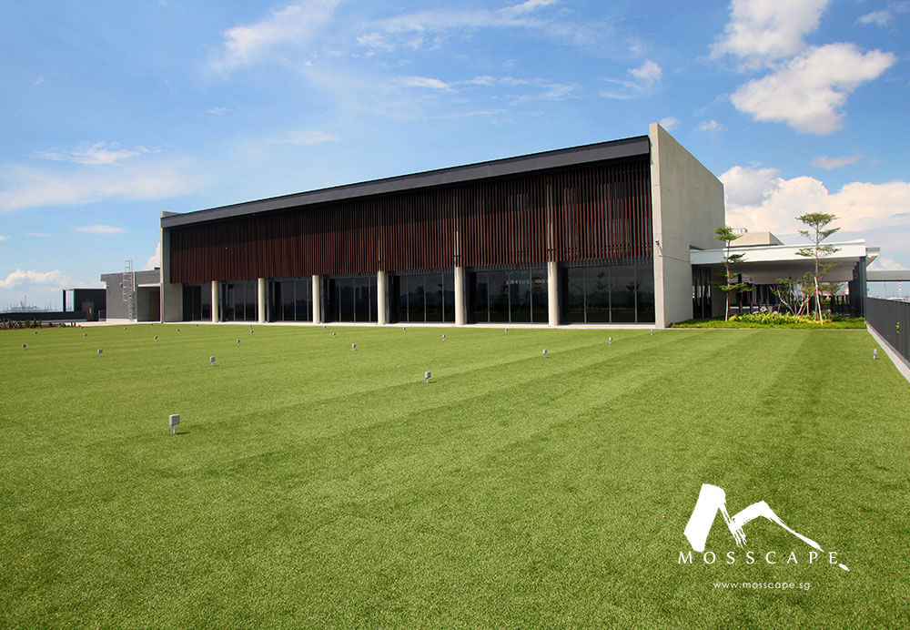 Synthetic turf at Coldhub industrial building
