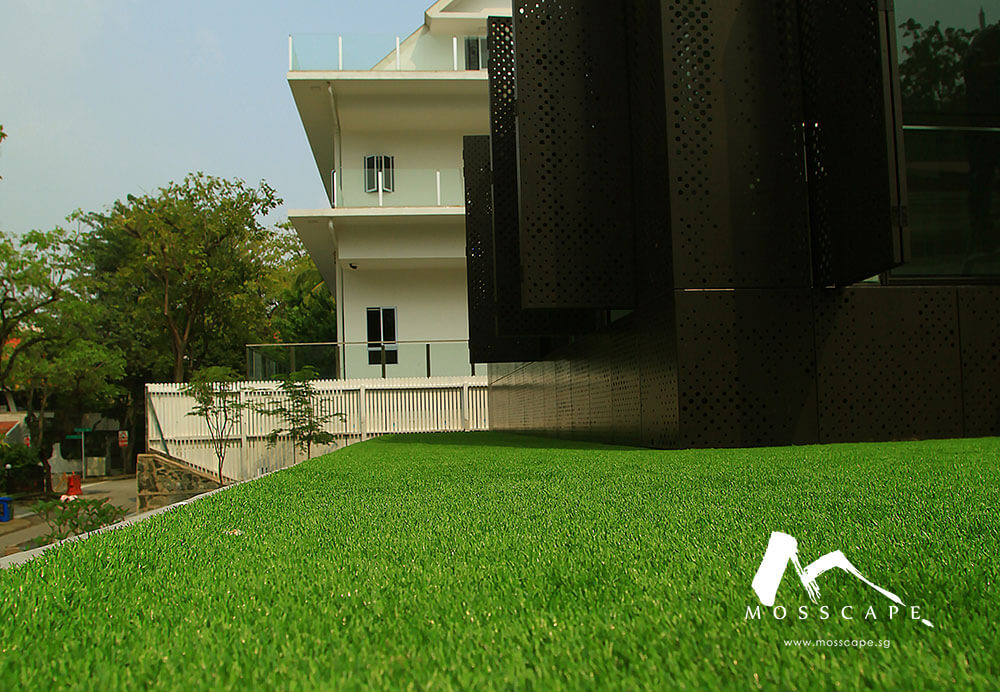Artificial green turf inside property at Faber Drive