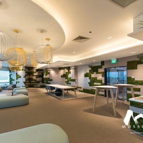 Artificial green walls at Fraser Office