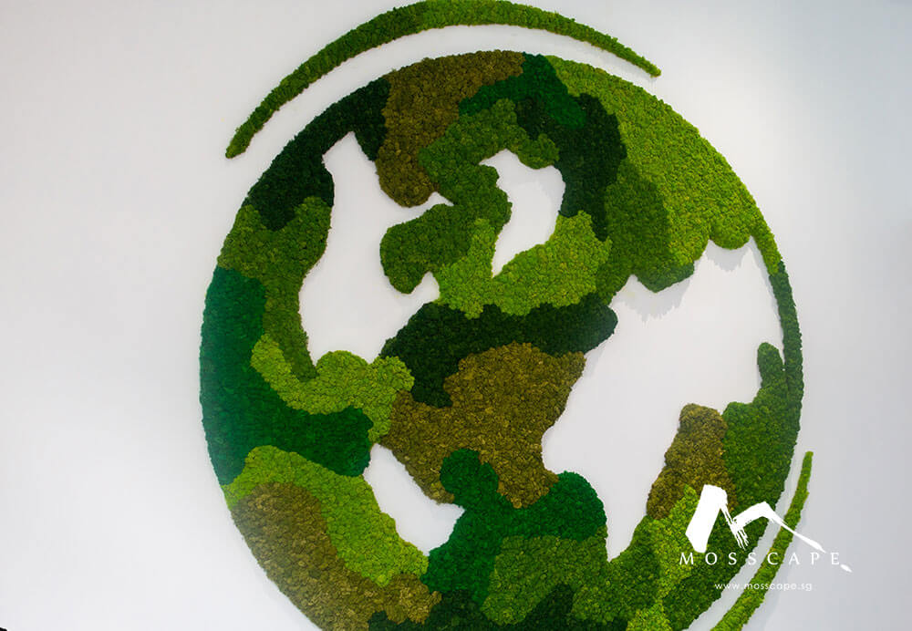 Preserved moss art on wall at IIM office