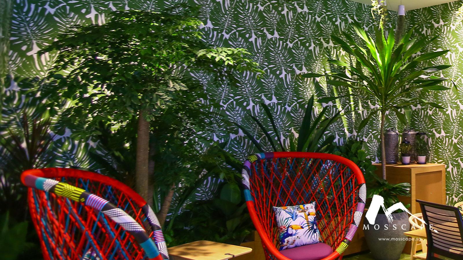 Indoor trees for interior design