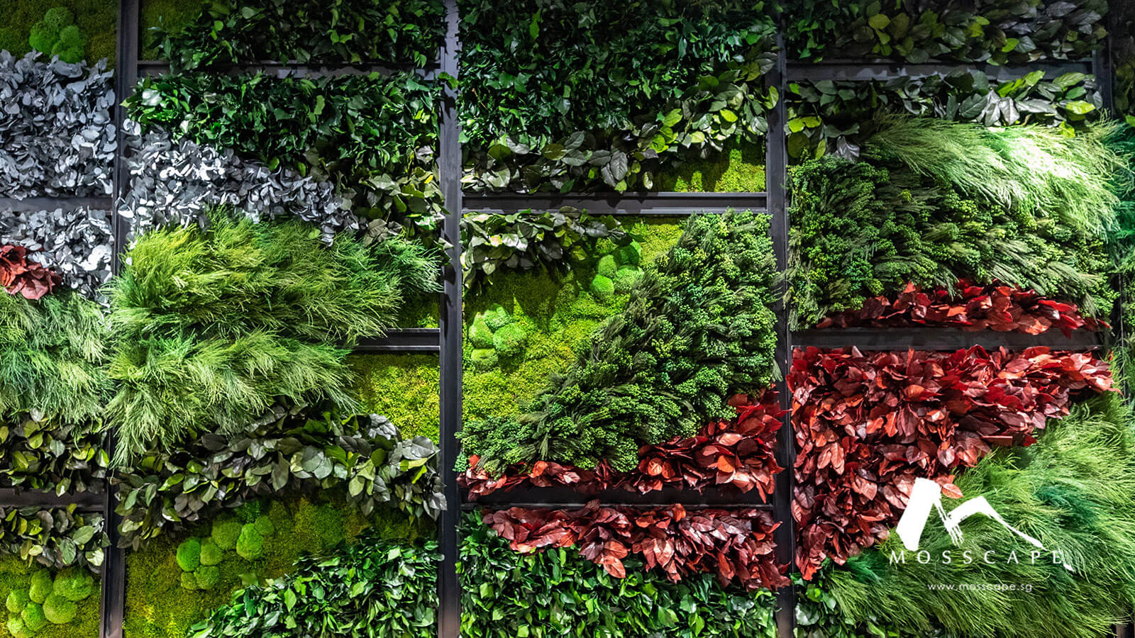 Indoor vertical garden in Singapore company