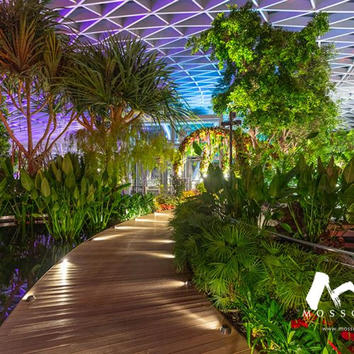 Biophilic walkway design at Jewel Changi level 5