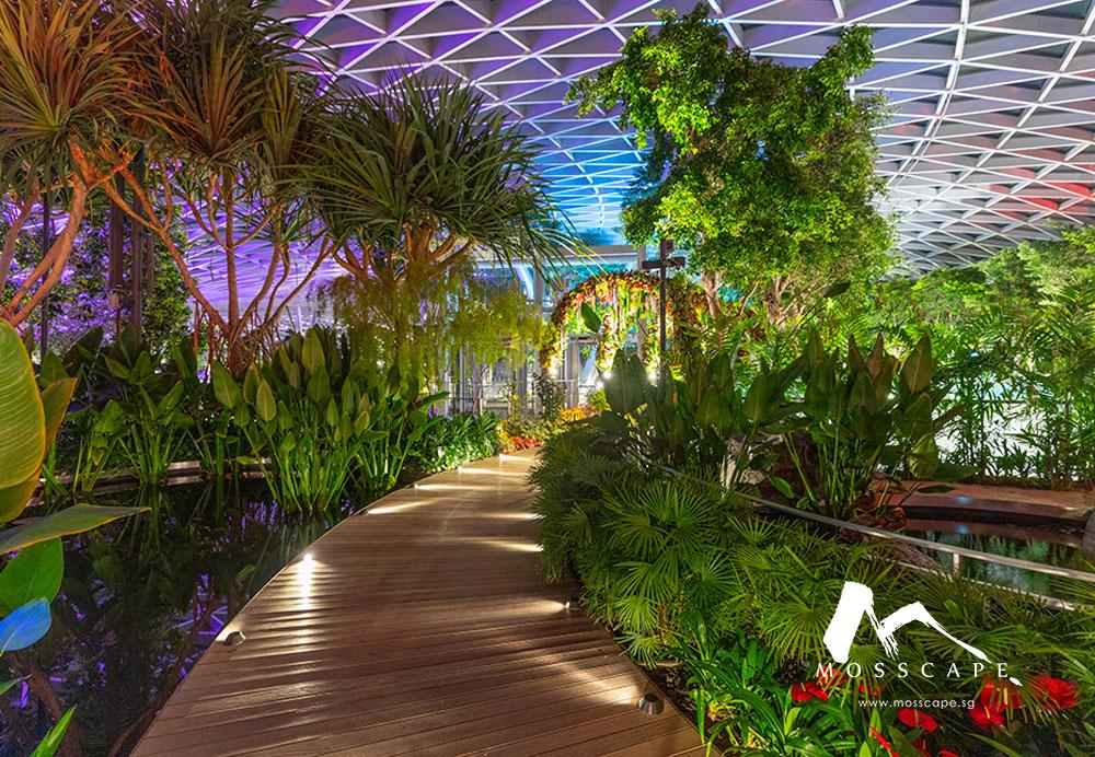 Biophilic walkway design at Jewel Changi level 5