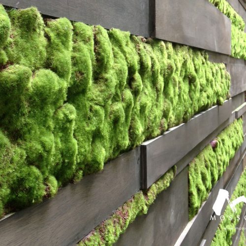 Artificial vertical garden in property at Nusajaya
