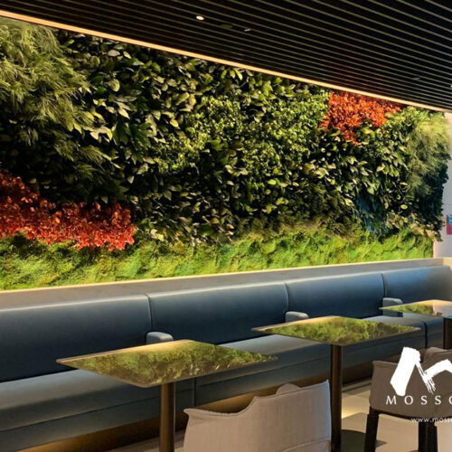 Preserved green wall in Qatar Airways Lounge