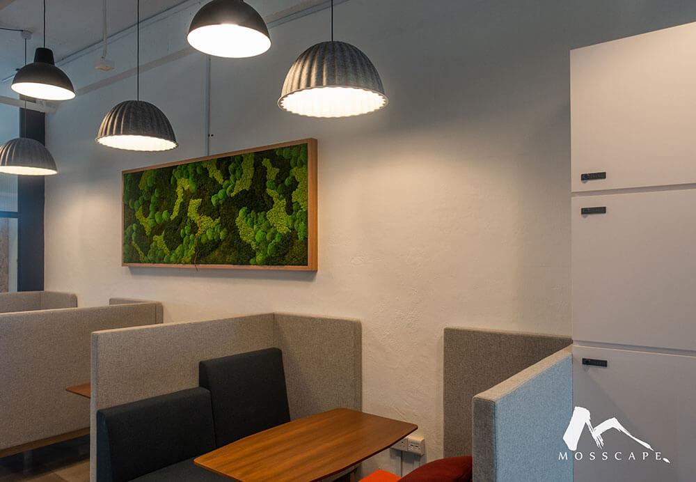 Framed preserved moss art in SNX Office
