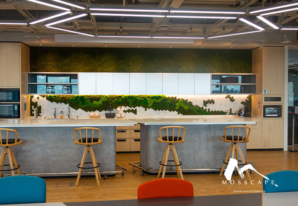 Preserved nature used at Toyota's office for biophilic interior design