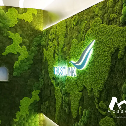 Preserved moss wall at entrance of Trust-Link