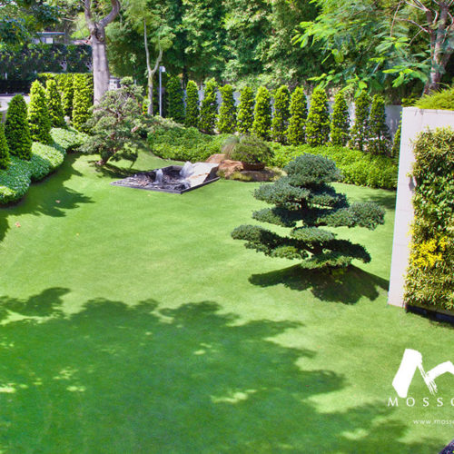Artificial green turf in garden of a bungalow at Cornwall Gardens