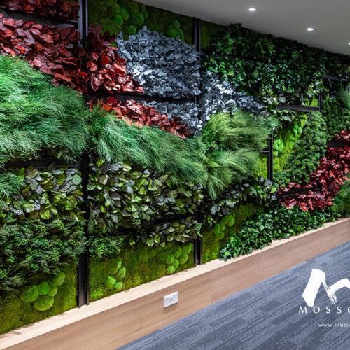 Indoor vertical garden in office of Envy Asset