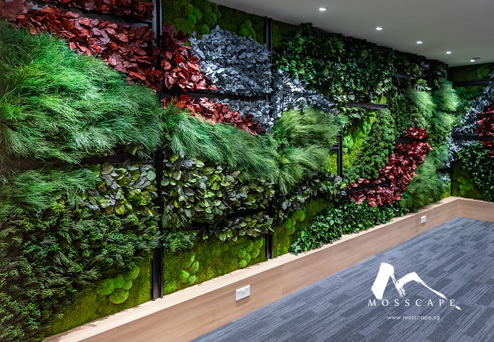 Indoor vertical garden in office of Envy Asset